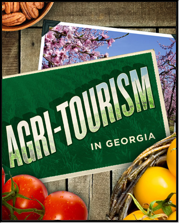 GEORGIA AGRI-TOURISM